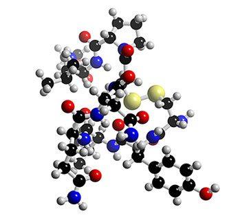 [Image: oxytocin-mol.jpg]